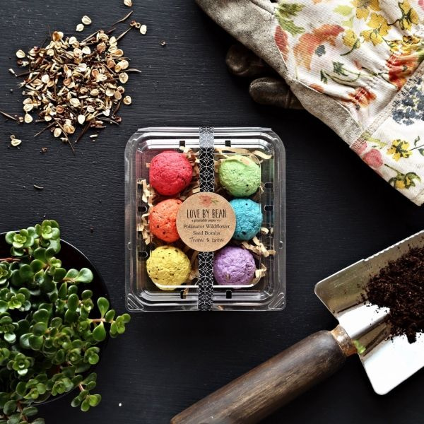 Rainbow Wildflower Seed Bombs