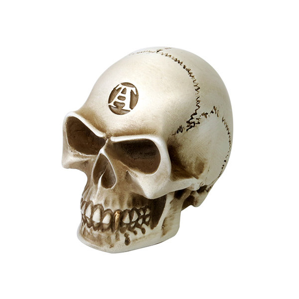 Bone Colored Skull Paper Weight (sku523700) photo