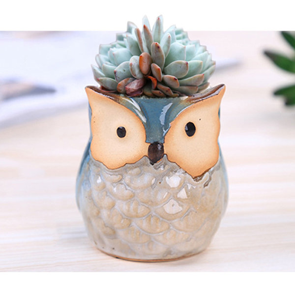 Owl Succulent Planter