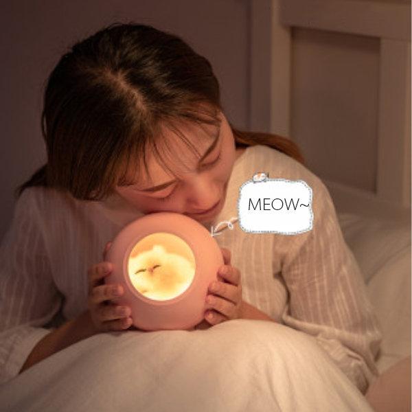 Cat House Night Light