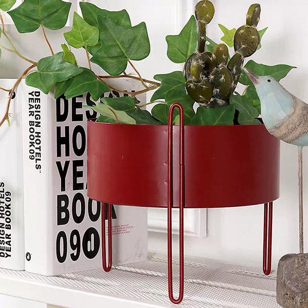 Trendy Tabletop Planter