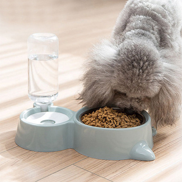 Pet Feeder And Water Fountain