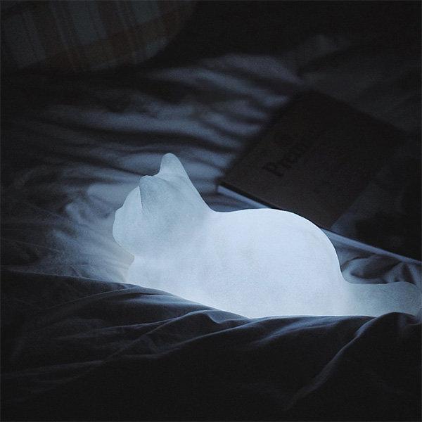 Soft Glow Cat Light